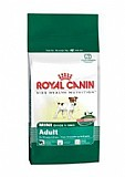 רויאל קנין כלב מבוגר מיני 2 ק''ג